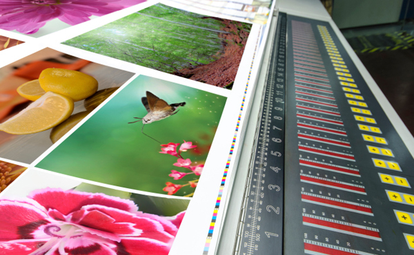 Commercial Printing for Business Success